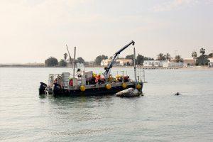 Reflotamiento de embarcaciones hundidas en el Mar Menor 6